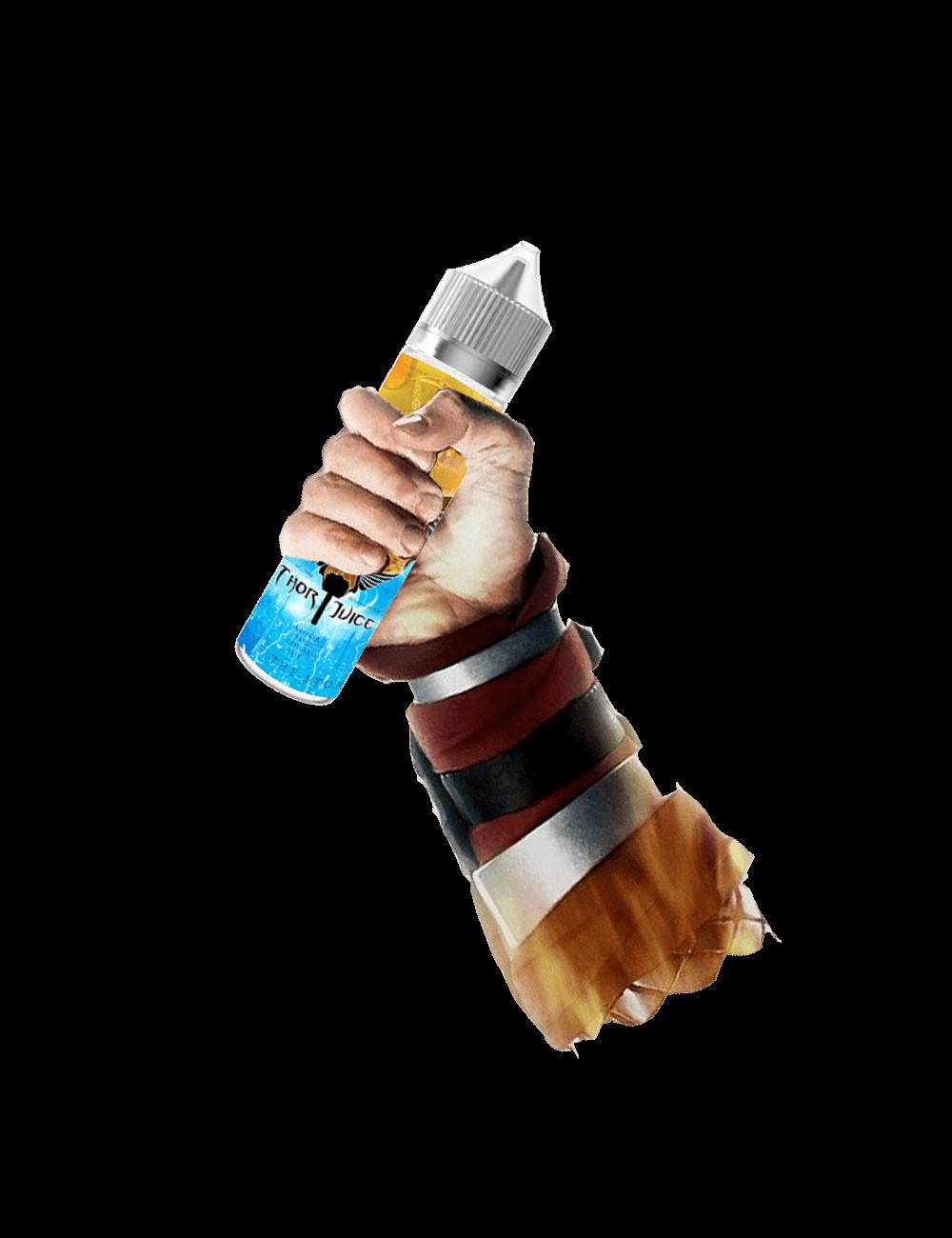 Thor_Holding_Chronos1